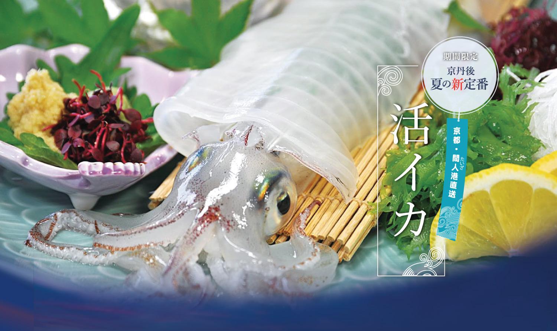 京都・間人港直送 活イカ